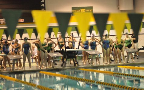Hunt is on for new swim coach
