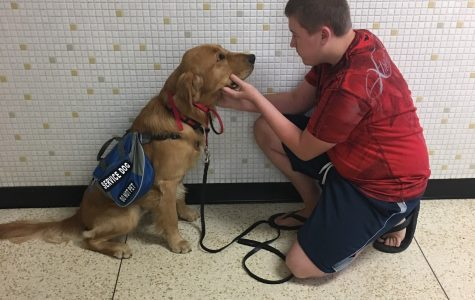 Service dog makes things easier for sophomore