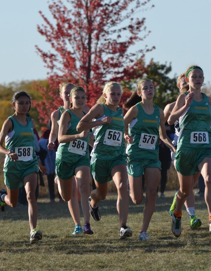 Girls Cross Country Runs To State
