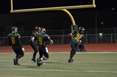 Photos: Playoffs Round 3: The Cougars Head For The Dome
