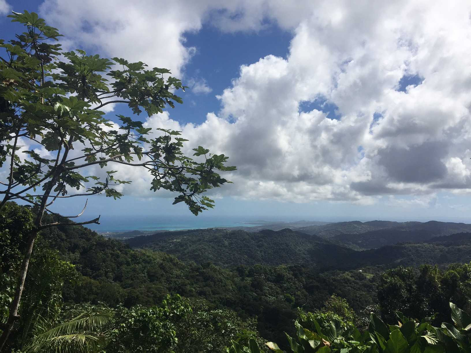 Puerto Rico. Photo provided by Kerrigan Urbi