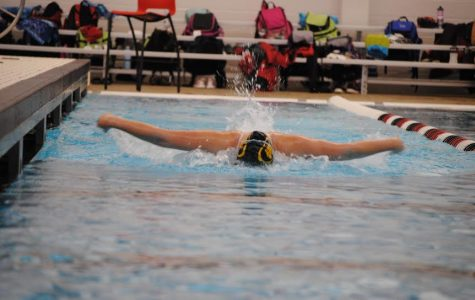 Photos: Girls Swimming and Diving Team