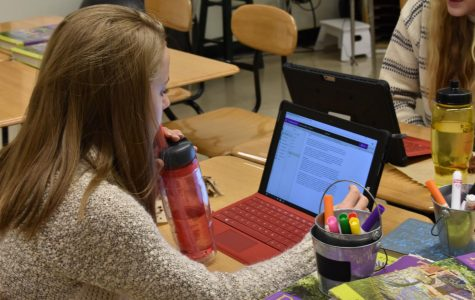 Sarah Nolting, sr., working on an assignment in AP Research.