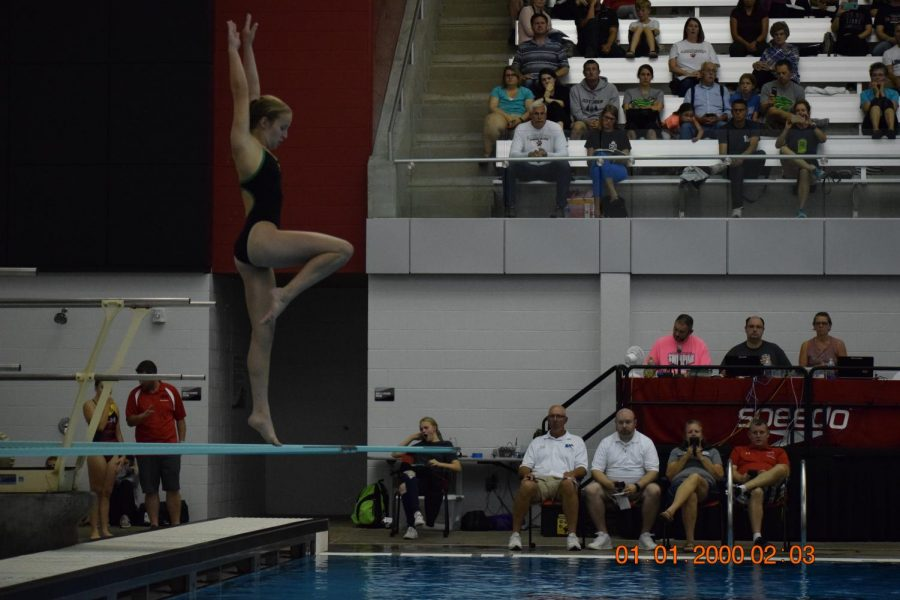 Anna Cater, getting ready to dive.