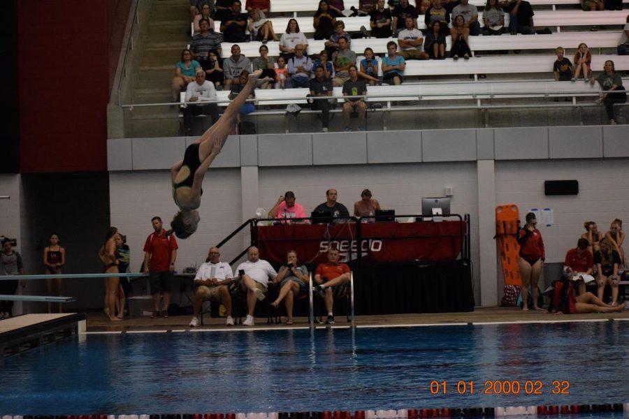 Freshman Audrey Leno diving.